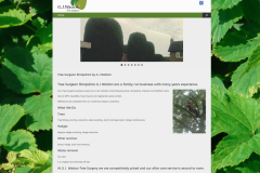 Tree Surgeon web site | http://gjwattontreesurgeon.co.uk/